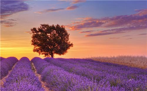 此地區物產豐饒,陽光明媚,風景優美,從古希臘,古羅馬時代起就吸引著無
