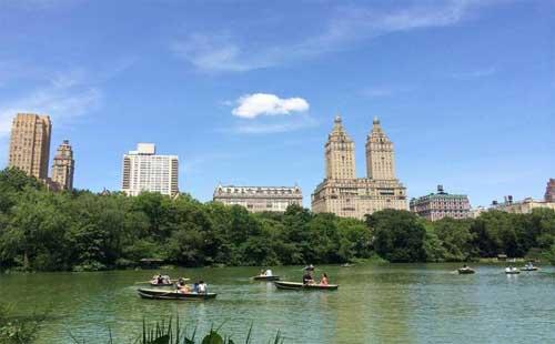 纽约的著名风景